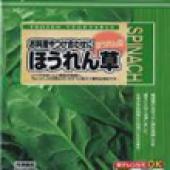 菠菜Spinach